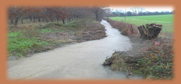 Contrôle des crues 44 Nantes - contrôle des inondations par Philippe Berlandier à Nantes et région nantaise